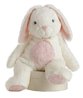 Aurora World Quizzies 16 Bun Bun Bunny Stuffed Bunny (Pink)